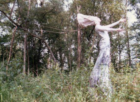 Animated Trail of Thornham Woods